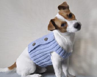 вяжем комбинезон для собаки