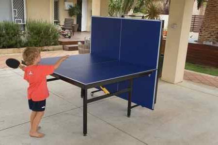 теннисный стол для дачи недорого
