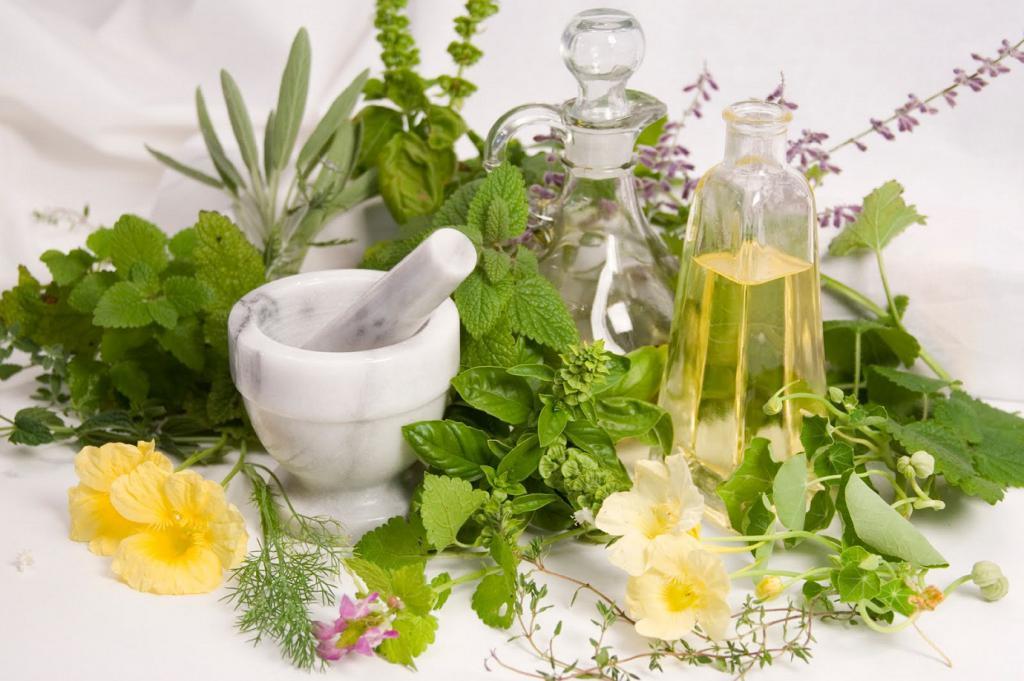 Народные средства для лечения от запоя