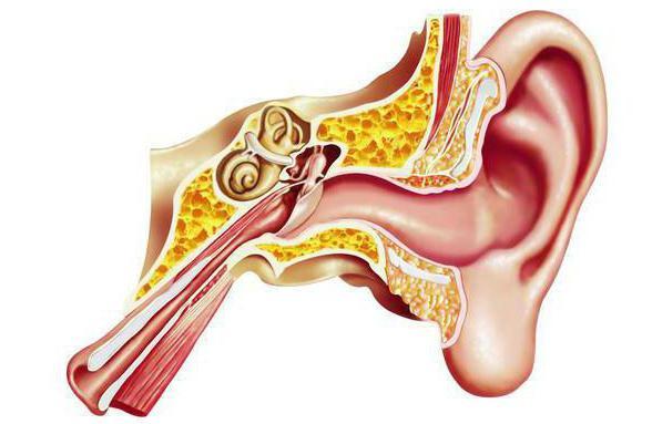 тимпанопластика отзывы после операции