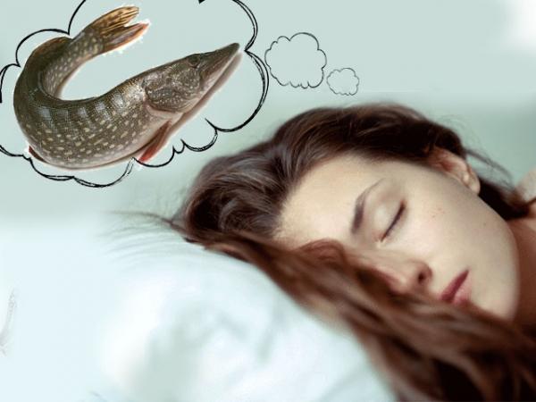 Если вам приснилась тухлая рыба, то неожиданные слухи испортят ваши отношения с влиятельным человеком.