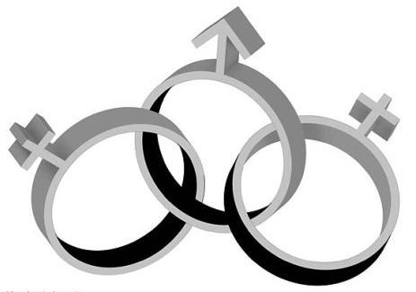 Полигамность – это признак развращённости или норма?