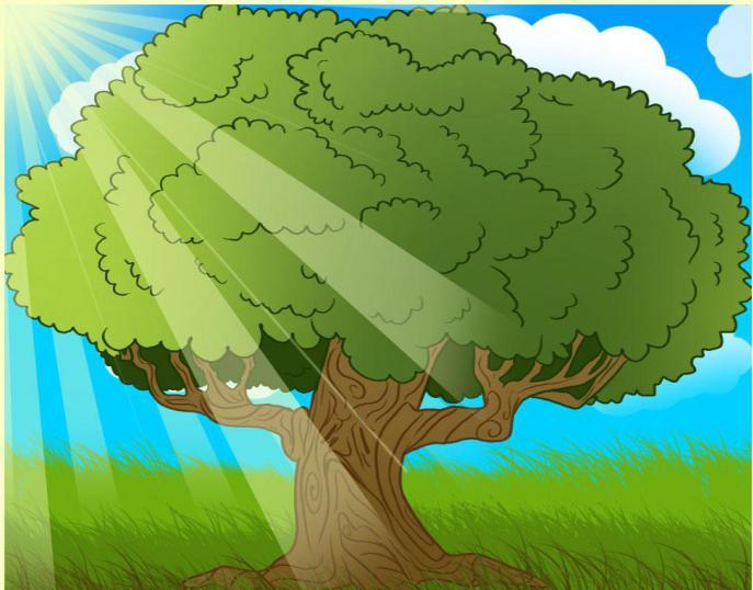 как нарисовать дуб зелёный