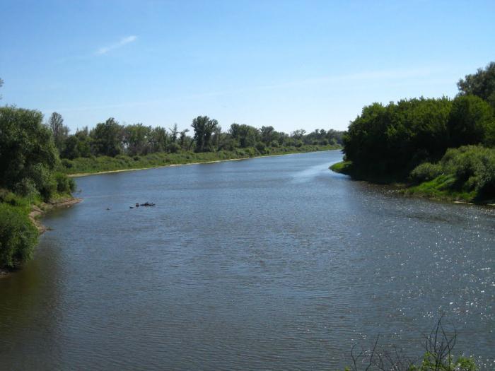 уровень воды в реке Тобол