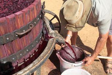 простое вино из винограда
