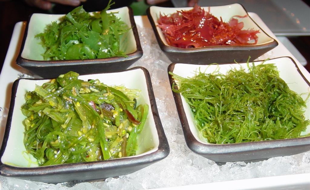 различные виды водорослей