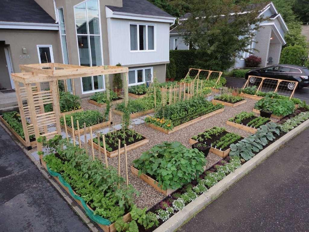 Как сделать сад из огорода 742
