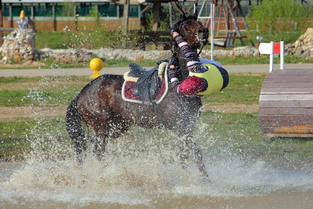 Падение с лошади