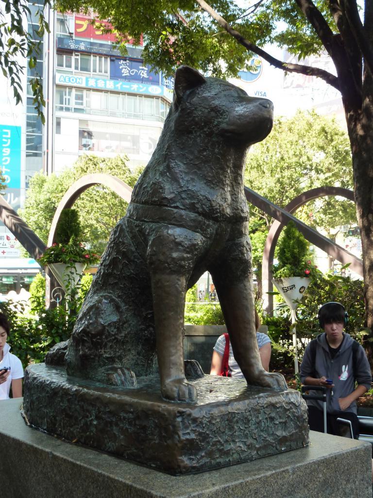 Какому животному поставлено 2 памятника фото и цены на дешевые памятники официальный сайт