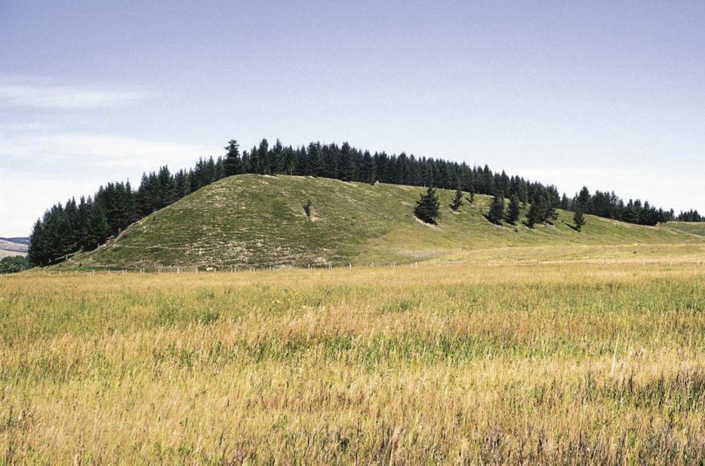 Друмлин - холм ледникового происхождения