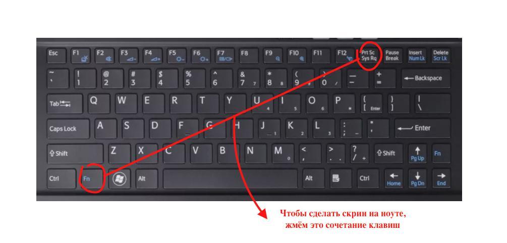 Как на ноутбуке сделать скриншот страницы на 590
