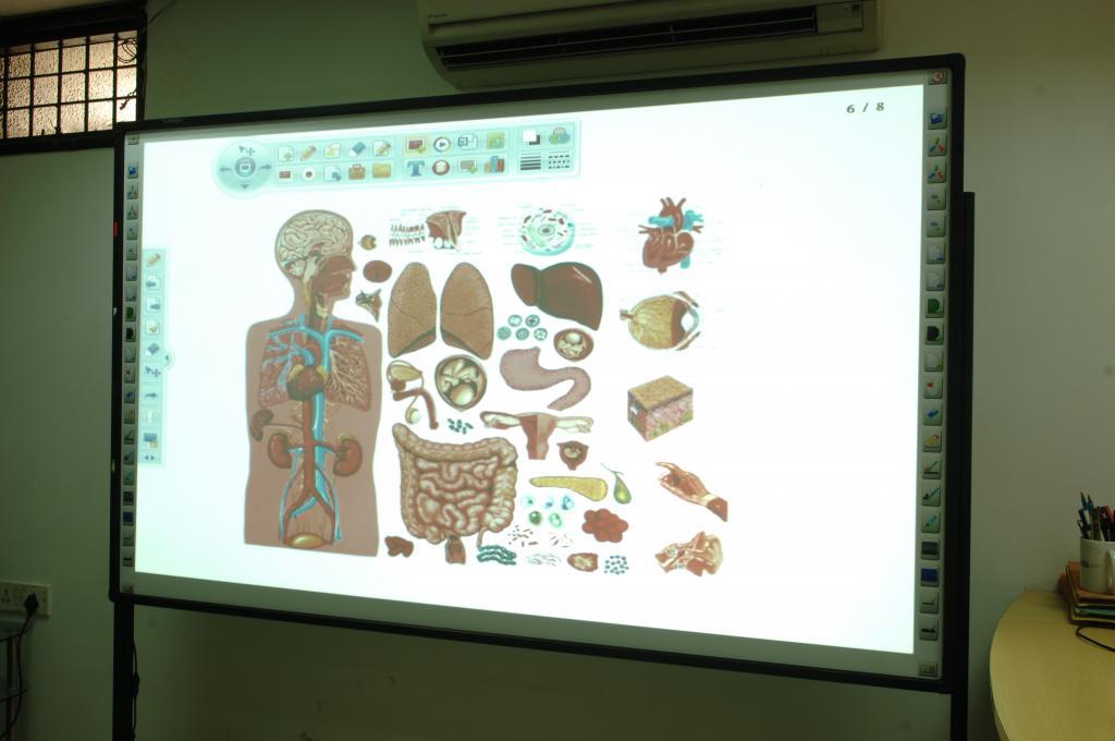 Using an interactive whiteboard in a biology class
