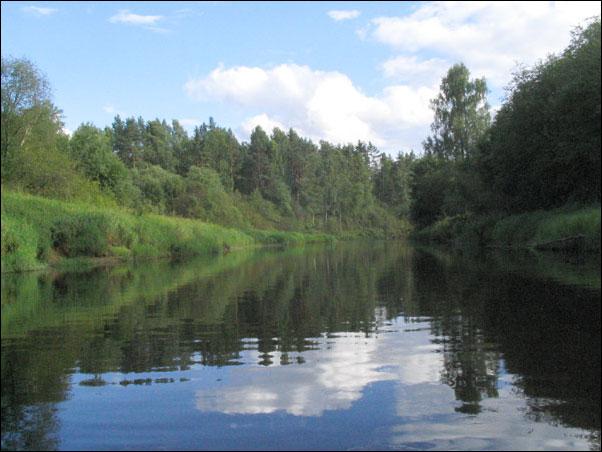 фото реки Плюсса