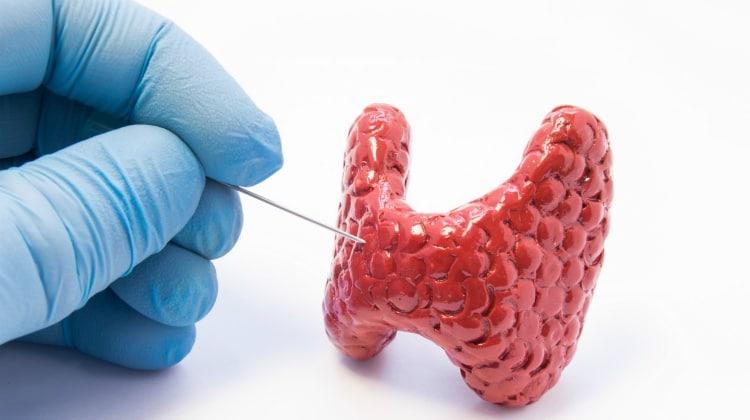 питание при болезнях щитовидки