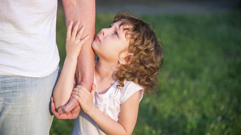 Исковое заявление об оспаривании отцовства и отмене алиментов образец