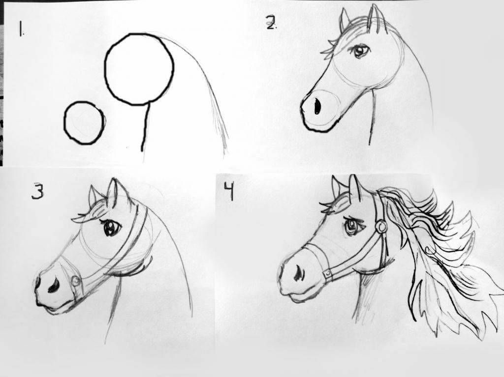 Рисунки коней карандашом легко и красиво поэтапно таких