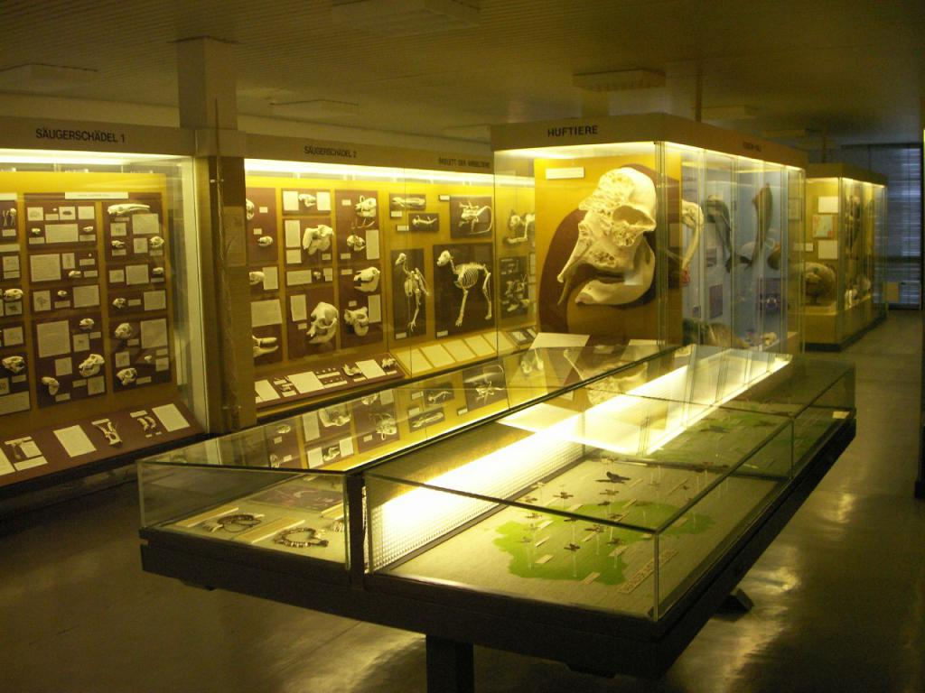 objects of biological sciences