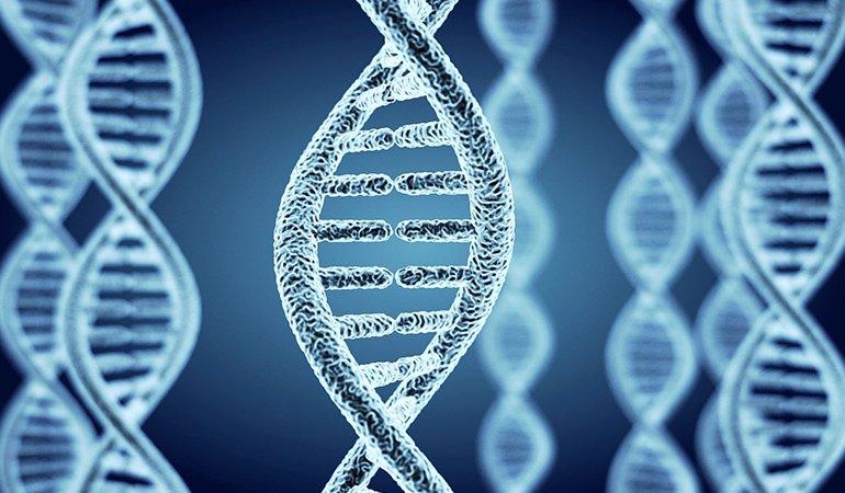 Генетическая предрасположенность