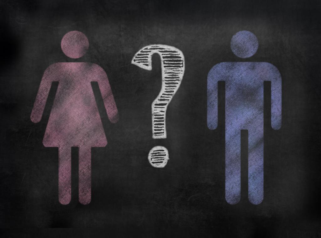половой диморфизм