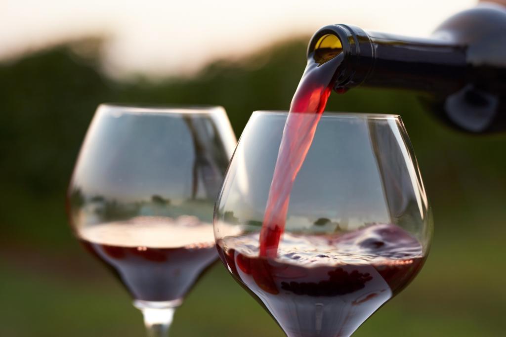 """Вино """"Фанагория Саперави"""" - технология производства и оттенки вкуса"""