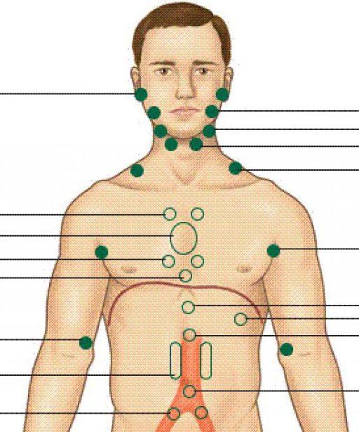 лимфоузлы на теле