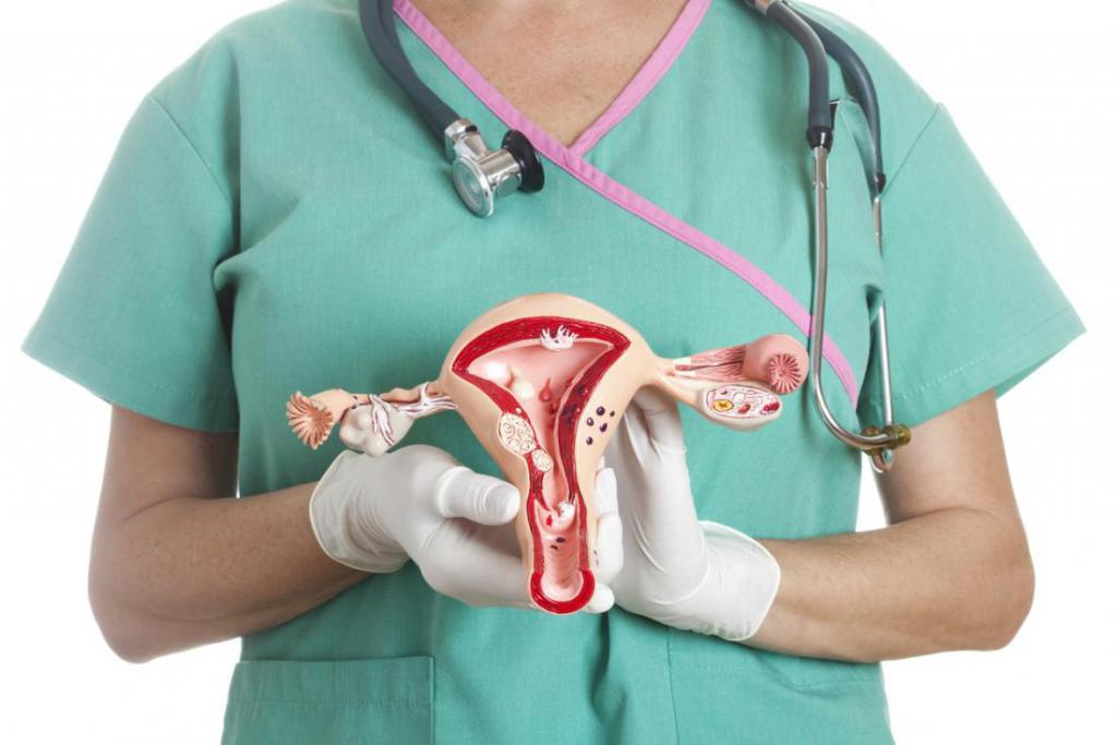 Рак женских органов симптомы 29