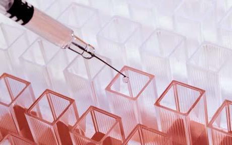 Гепатит с течение болезни