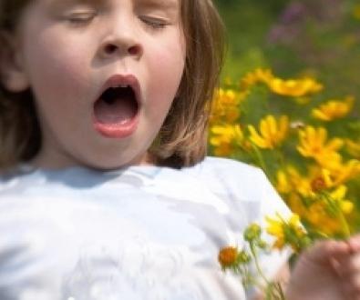 аллергия на искусственные цветы