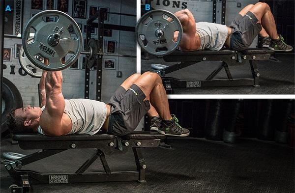 Четыре режима работы мышц и их характеристика