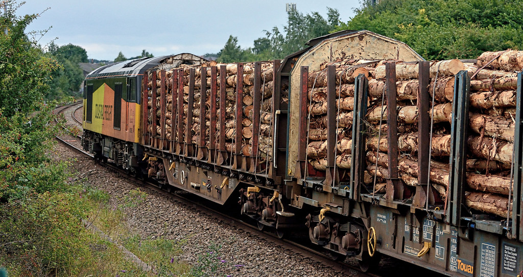 Carriage of wood by rail