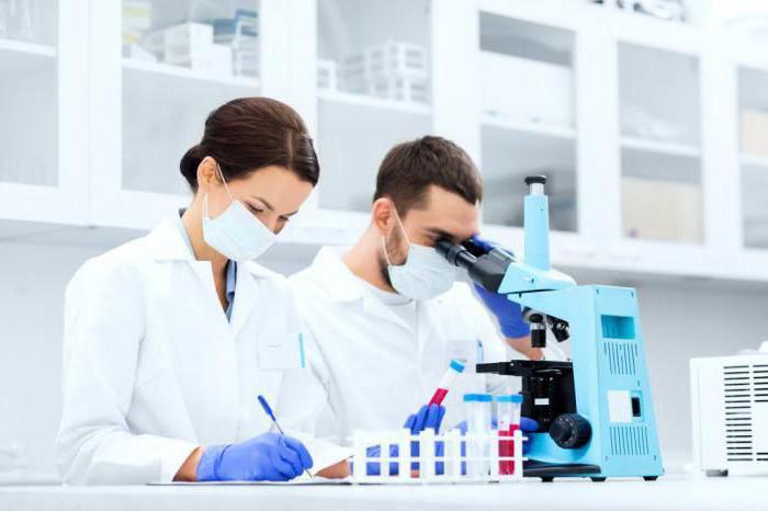 Сколько делается иммуноблот 5