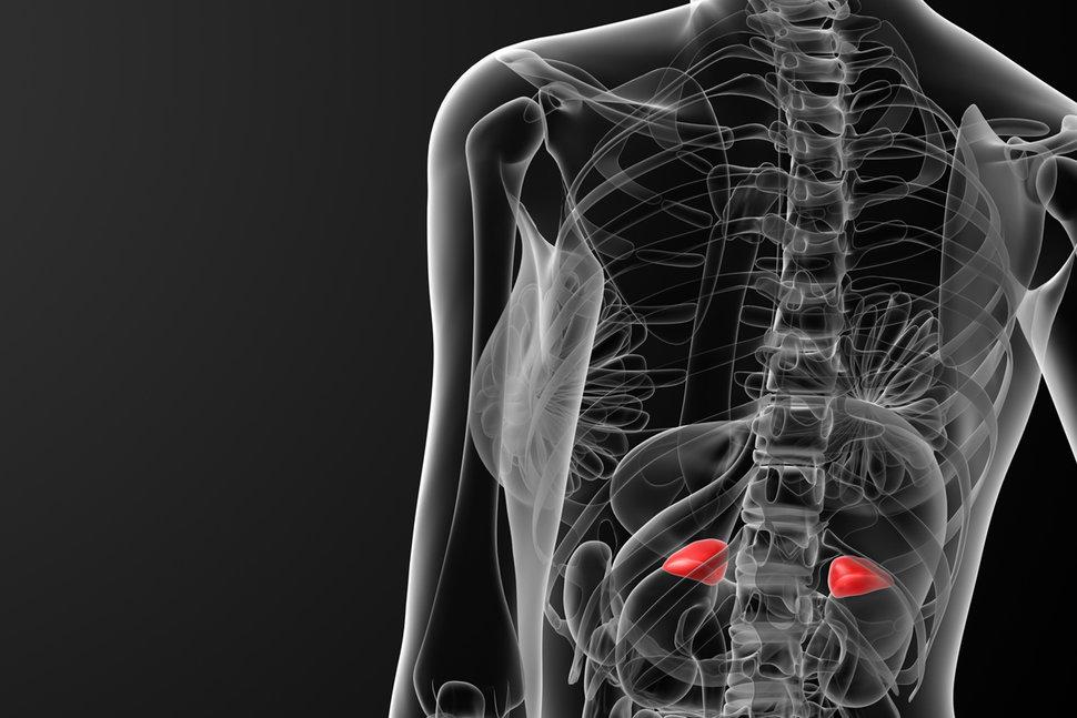 Киста надпочечника: симптомы, причины возникновения, ранняя диагностика, методы лечения