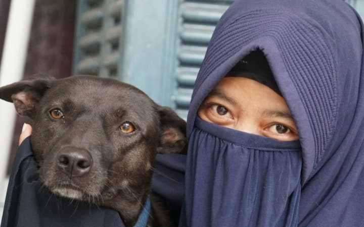 Мусульманка и собака