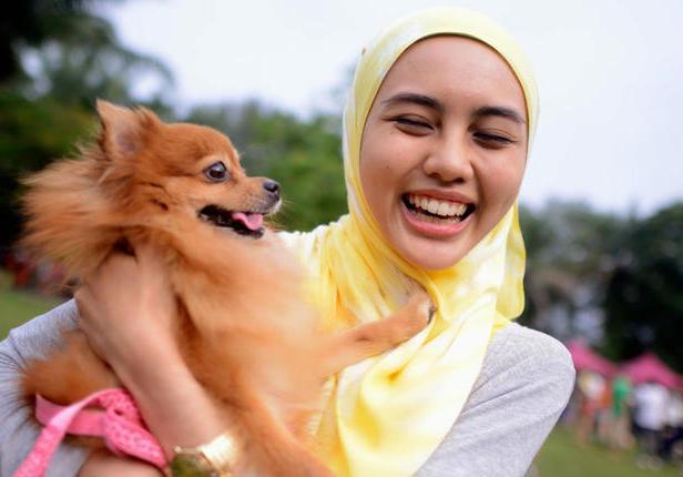 Мусульманка и пес