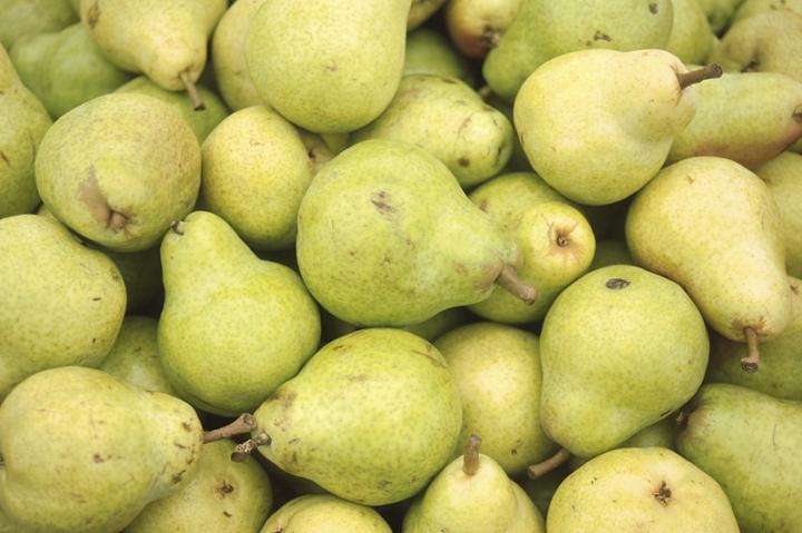 Pear harm
