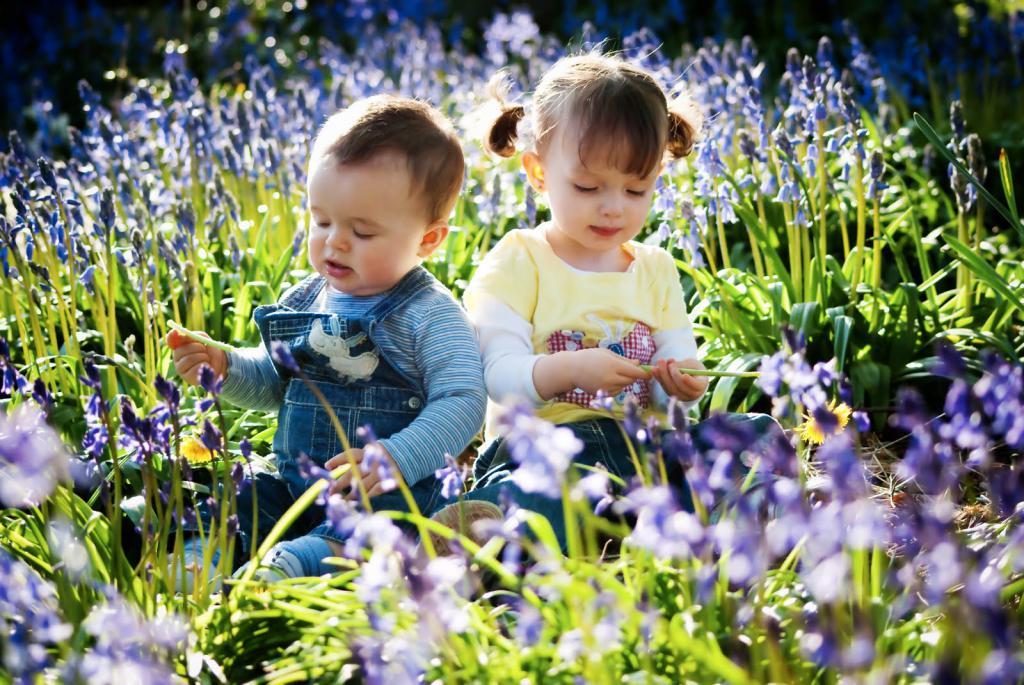 Весна в прозе паустовского сытное