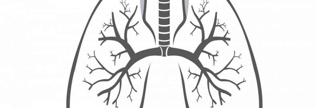 Корни легких уплотнены: что это означает?