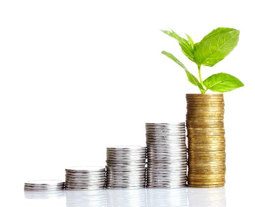бюджет инвестиционных расходов