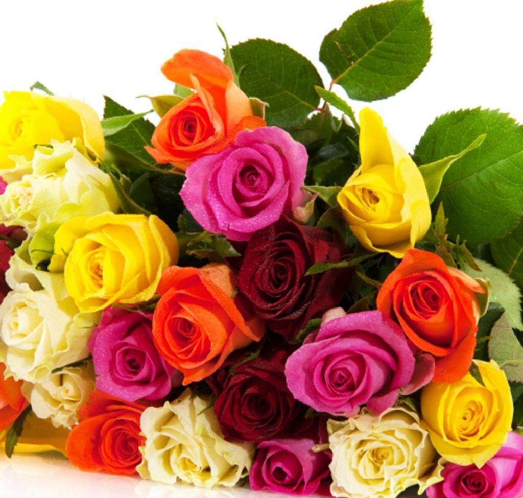 большой букет цветных роз