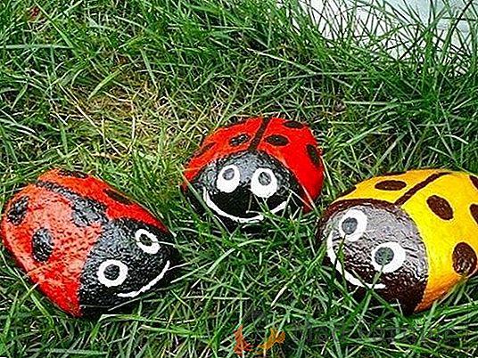 Ladybugs made of stones