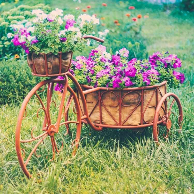 Flowerbed of bicycle