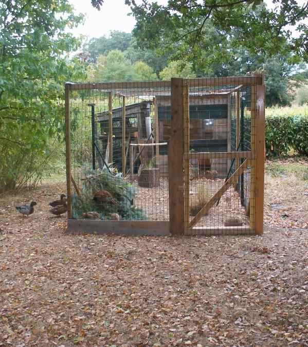 Aviary for birds