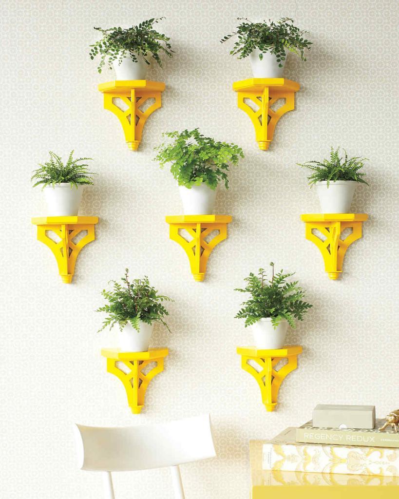 Wall shelves for flowers.