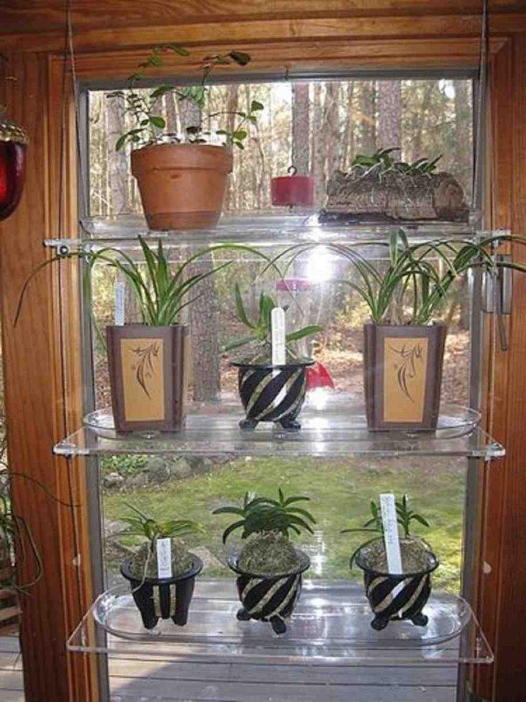Glass shelves for flowers.
