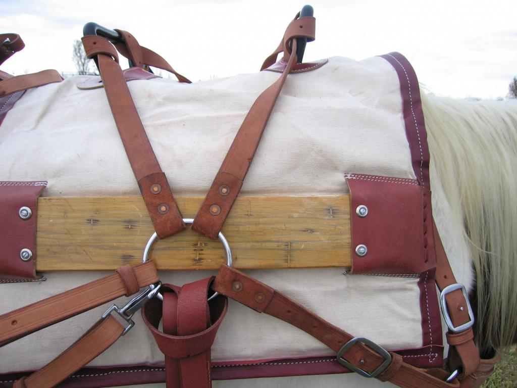 Pack saddle for a horse.