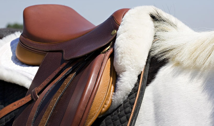 A horsepot for a horse.