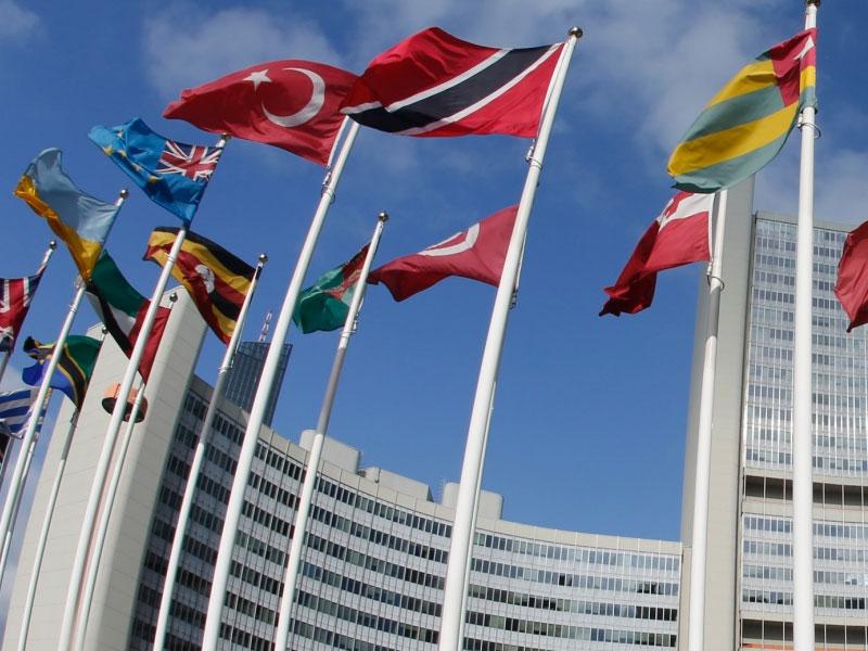 structure of international organizations