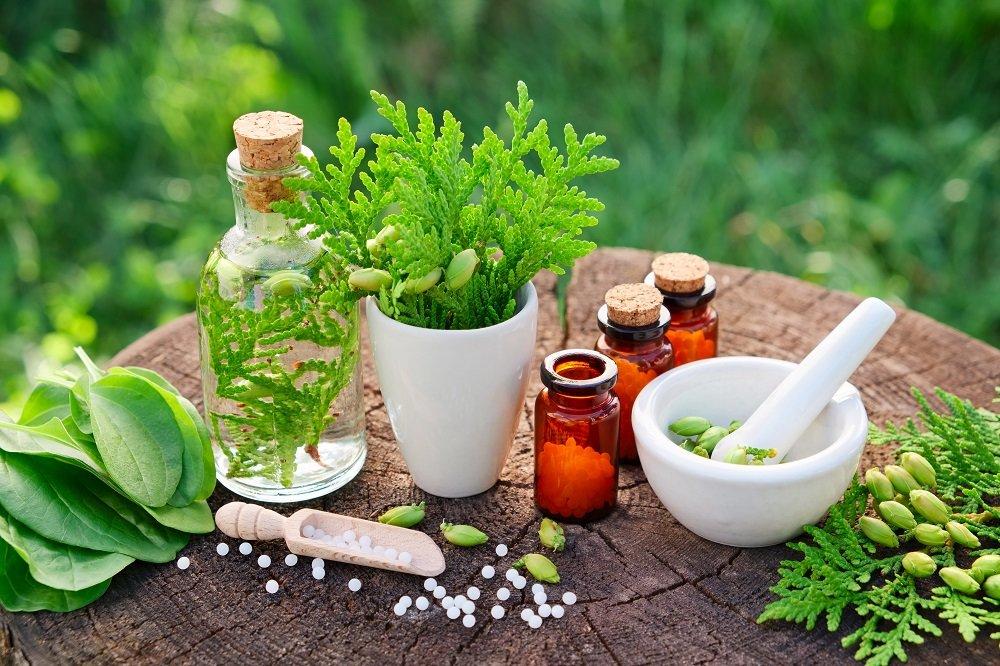 Herbs in medicine