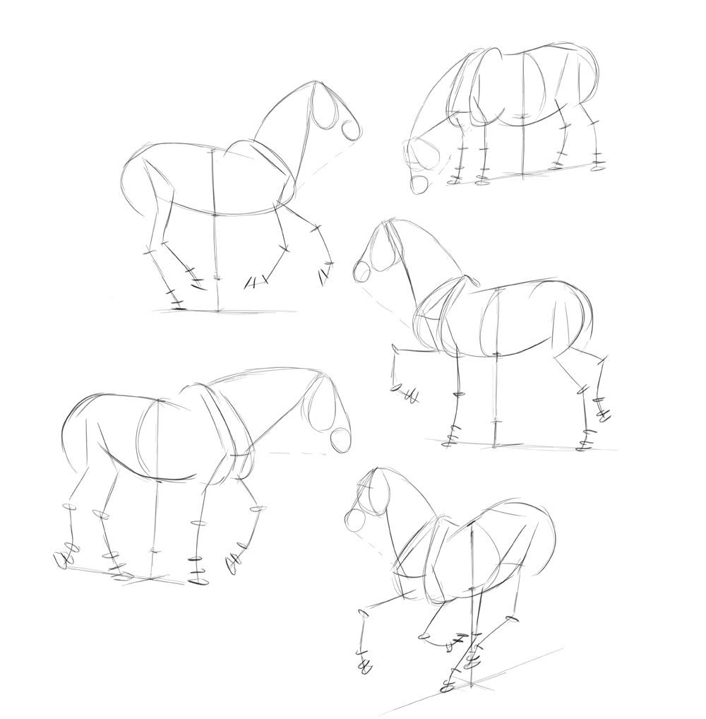 Картинки поэтапного рисования лошадей