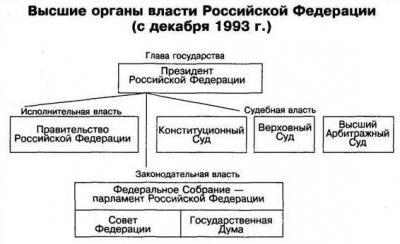 Схема дерева власти с ветвями 91